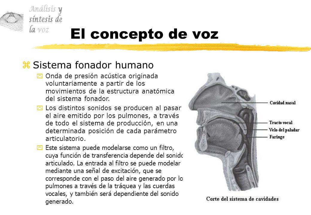 El concepto de voz Sistema fonador humano
