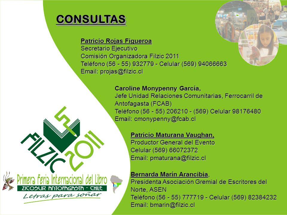 CONSULTAS Patricio Rojas Figueroa Secretario Ejecutivo