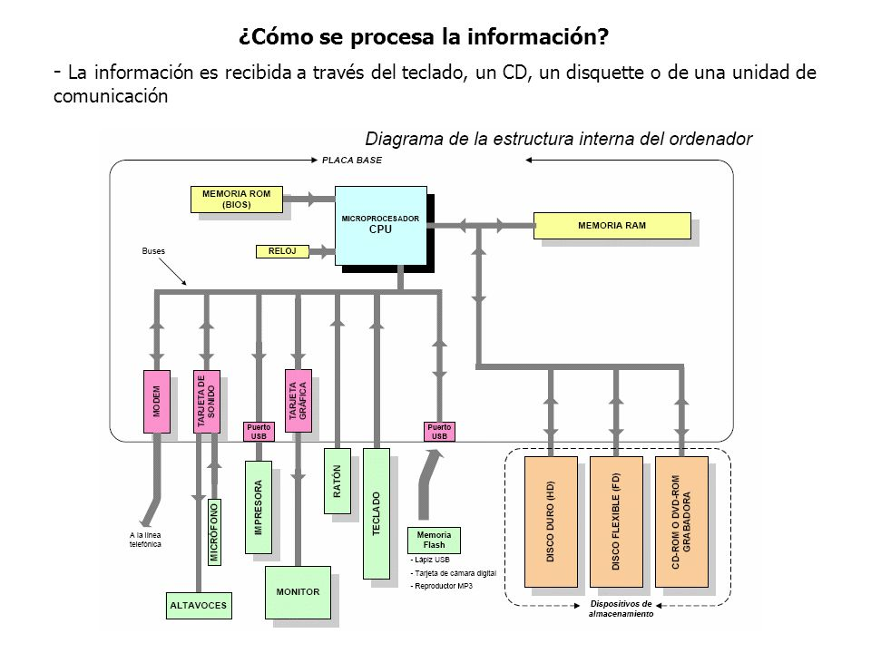 ¿Cómo se procesa la información
