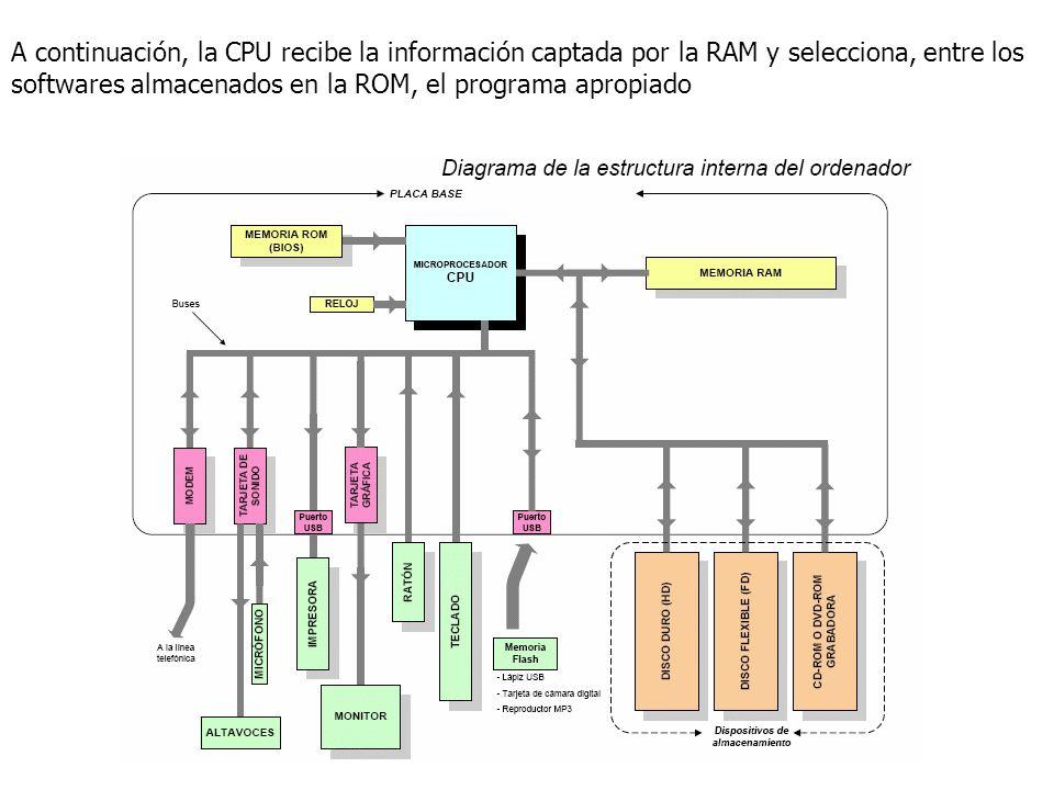 A continuación, la CPU recibe la información captada por la RAM y selecciona, entre los softwares almacenados en la ROM, el programa apropiado