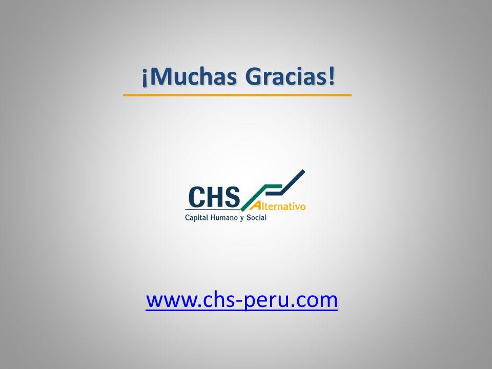 ¡Muchas Gracias! www.chs-peru.com 29
