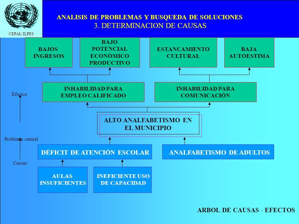 ALTO ANALFABETISMO EN EL MUNICIPIO ANALFABETISMO DE ADULTOS