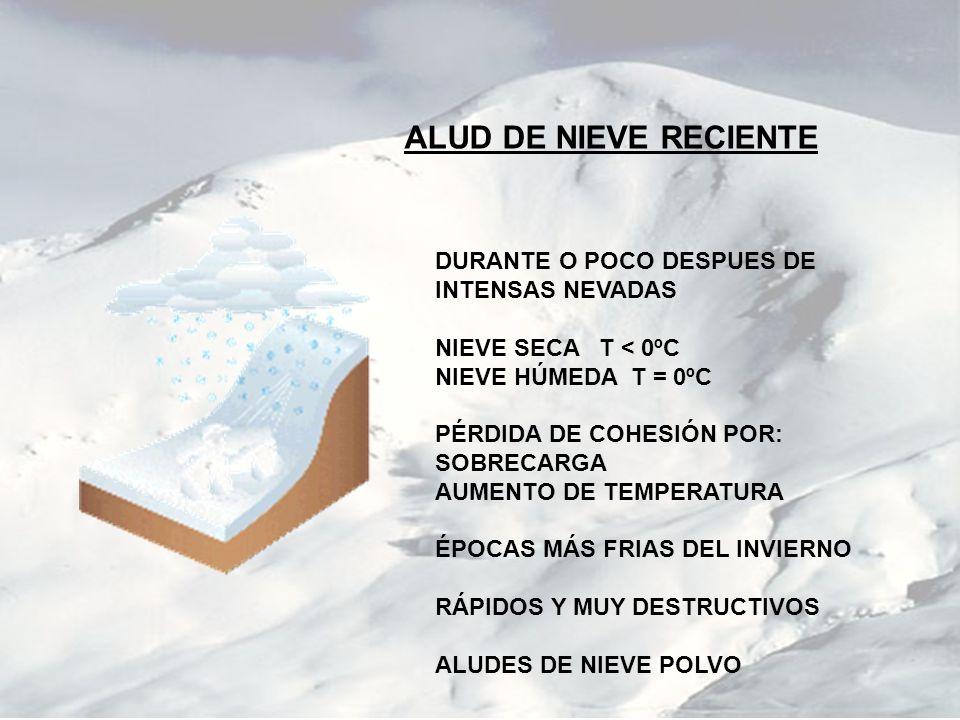 ALUD DE NIEVE RECIENTE DURANTE O POCO DESPUES DE INTENSAS NEVADAS