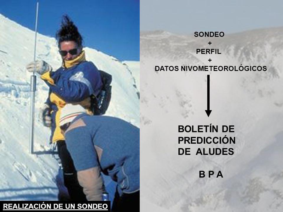 BOLETÍN DE PREDICCIÓN DE ALUDES B P A SONDEO + PERFIL