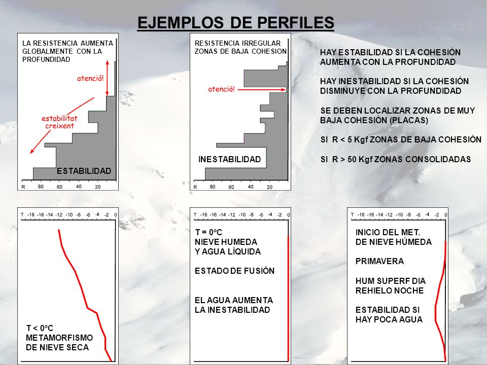 EJEMPLOS DE PERFILES HAY ESTABILIDAD SI LA COHESIÓN