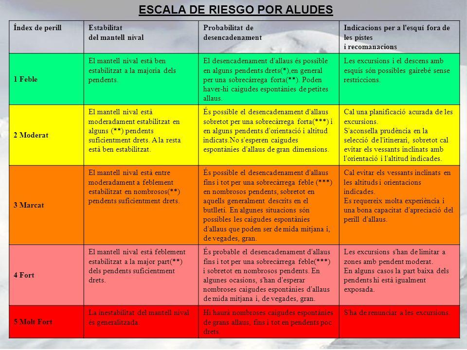 ESCALA DE RIESGO POR ALUDES