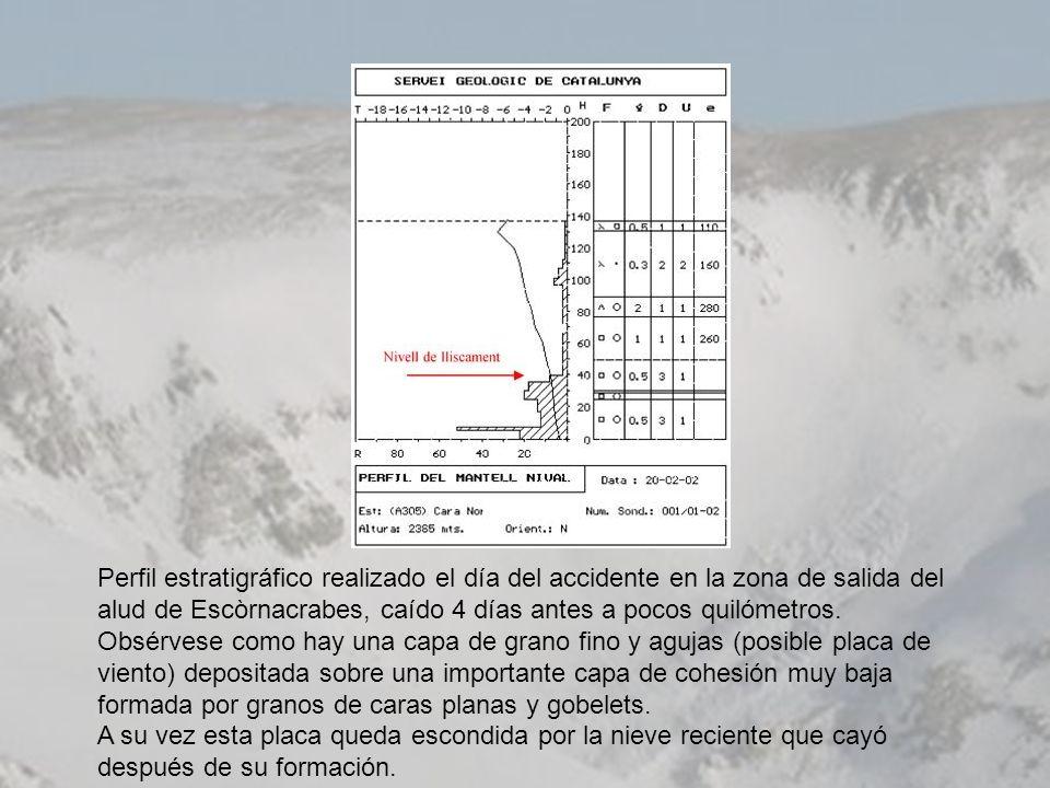 Perfil estratigráfico realizado el día del accidente en la zona de salida del alud de Escòrnacrabes, caído 4 días antes a pocos quilómetros.