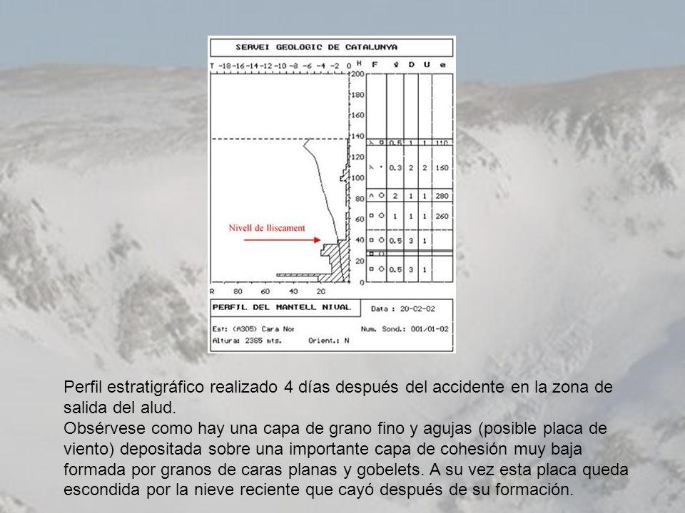 Perfil estratigráfico realizado 4 días después del accidente en la zona de salida del alud.