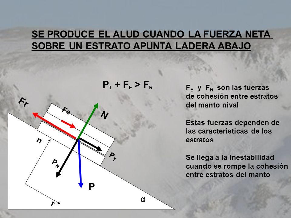 SE PRODUCE EL ALUD CUANDO LA FUERZA NETA