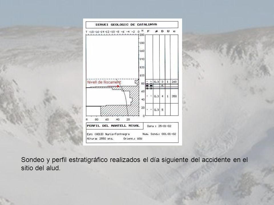 Sondeo y perfil estratigráfico realizados el día siguiente del accidente en el sitio del alud.