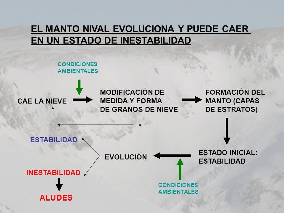 EL MANTO NIVAL EVOLUCIONA Y PUEDE CAER EN UN ESTADO DE INESTABILIDAD