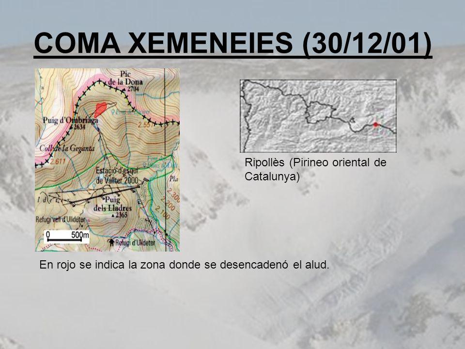 COMA XEMENEIES (30/12/01) Ripollès (Pirineo oriental de Catalunya)