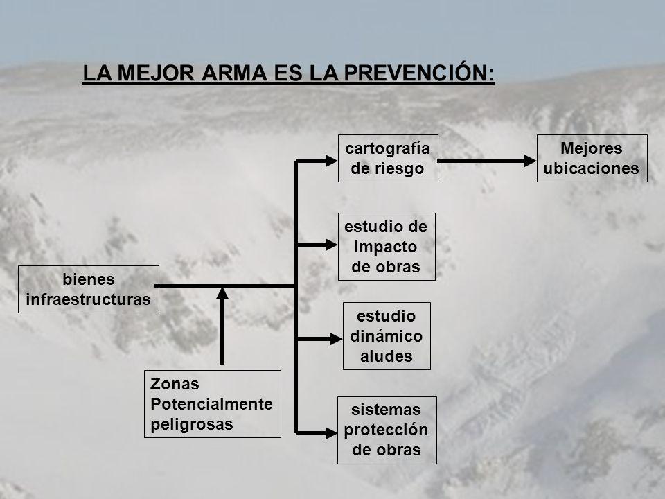 LA MEJOR ARMA ES LA PREVENCIÓN:
