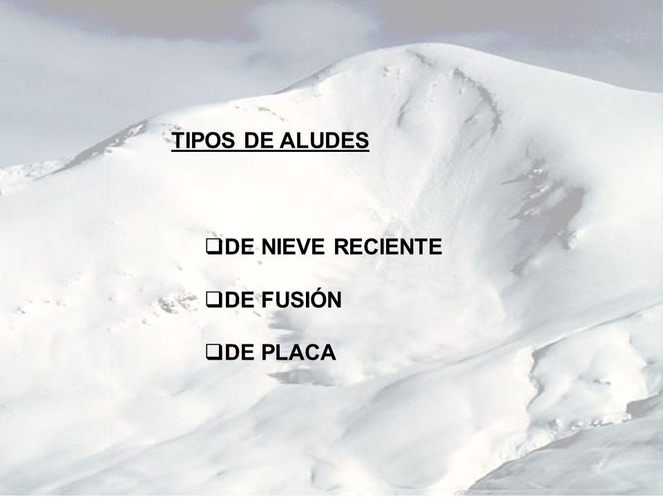 TIPOS DE ALUDES DE NIEVE RECIENTE DE FUSIÓN DE PLACA
