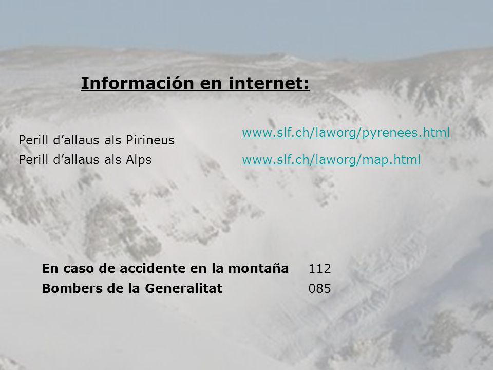 Información en internet: