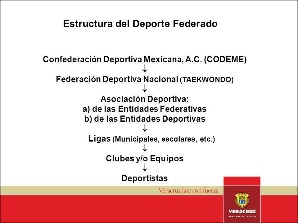 Estructura del Deporte Federado