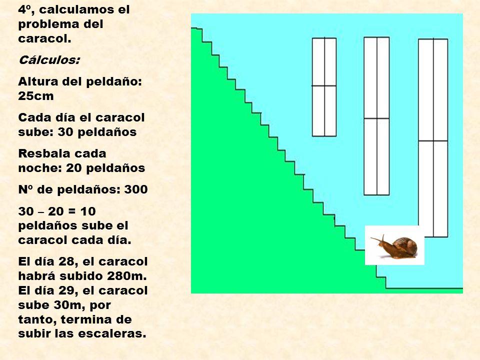4º, calculamos el problema del caracol.
