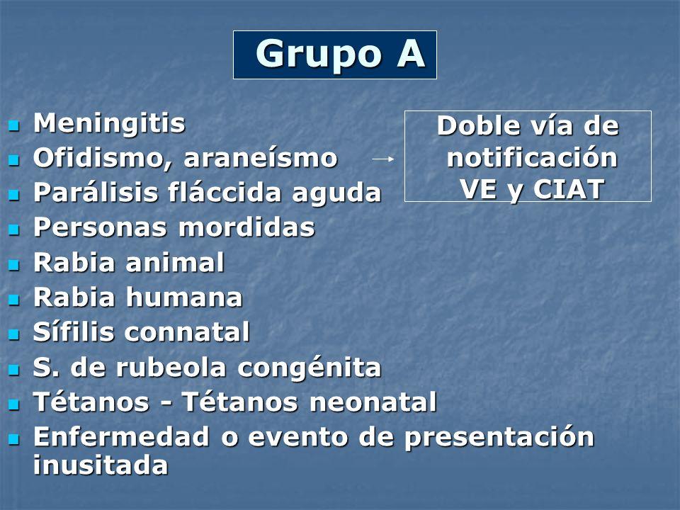 Grupo A Meningitis Doble vía de Ofidismo, araneísmo notificación