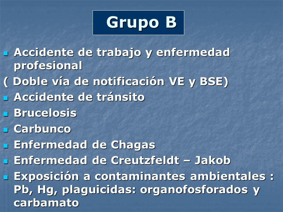 Grupo B Accidente de trabajo y enfermedad profesional