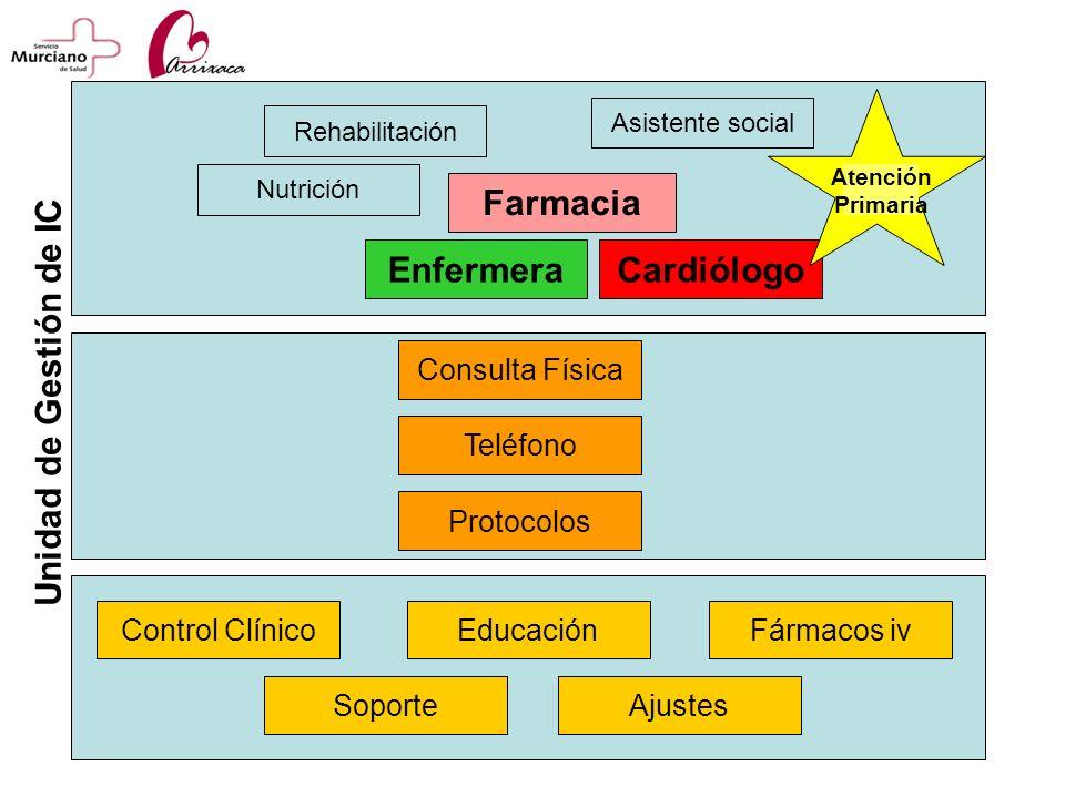 Farmacia Enfermera Cardiólogo Unidad de Gestión de IC