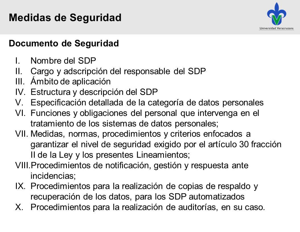 Medidas de Seguridad Documento de Seguridad Nombre del SDP