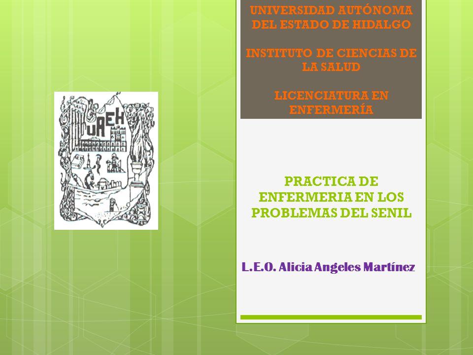 L.E.O. Alicia Angeles Martínez