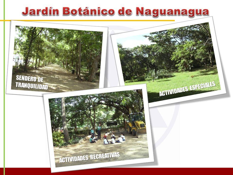 Jardín Botánico de Naguanagua