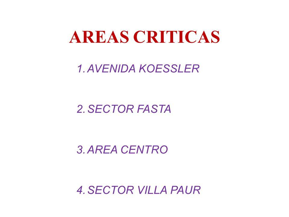 AREAS CRITICAS AVENIDA KOESSLER SECTOR FASTA AREA CENTRO