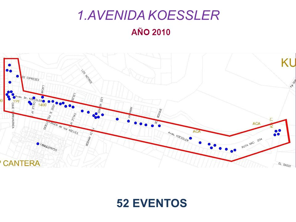 AVENIDA KOESSLER AÑO 2010 52 EVENTOS