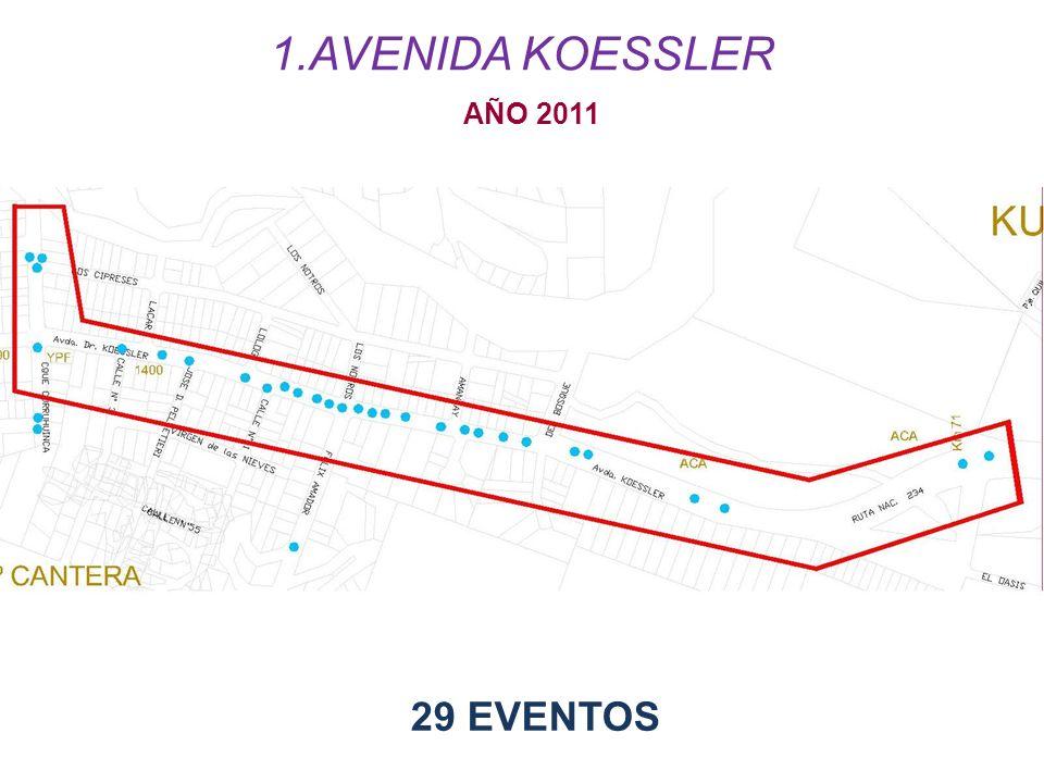 AVENIDA KOESSLER AÑO 2011 29 EVENTOS