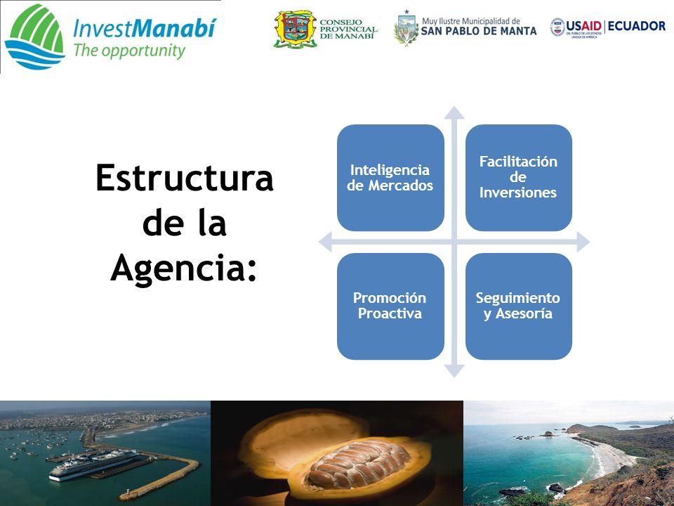 Estructura de la Agencia: