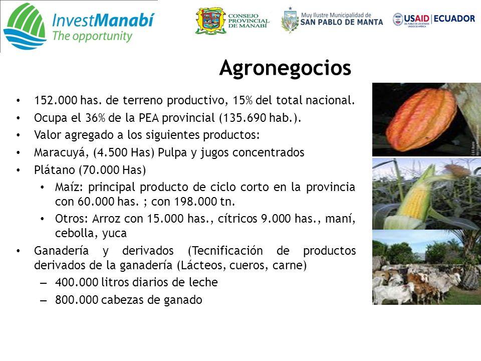 Agronegocios 152.000 has. de terreno productivo, 15% del total nacional. Ocupa el 36% de la PEA provincial (135.690 hab.).
