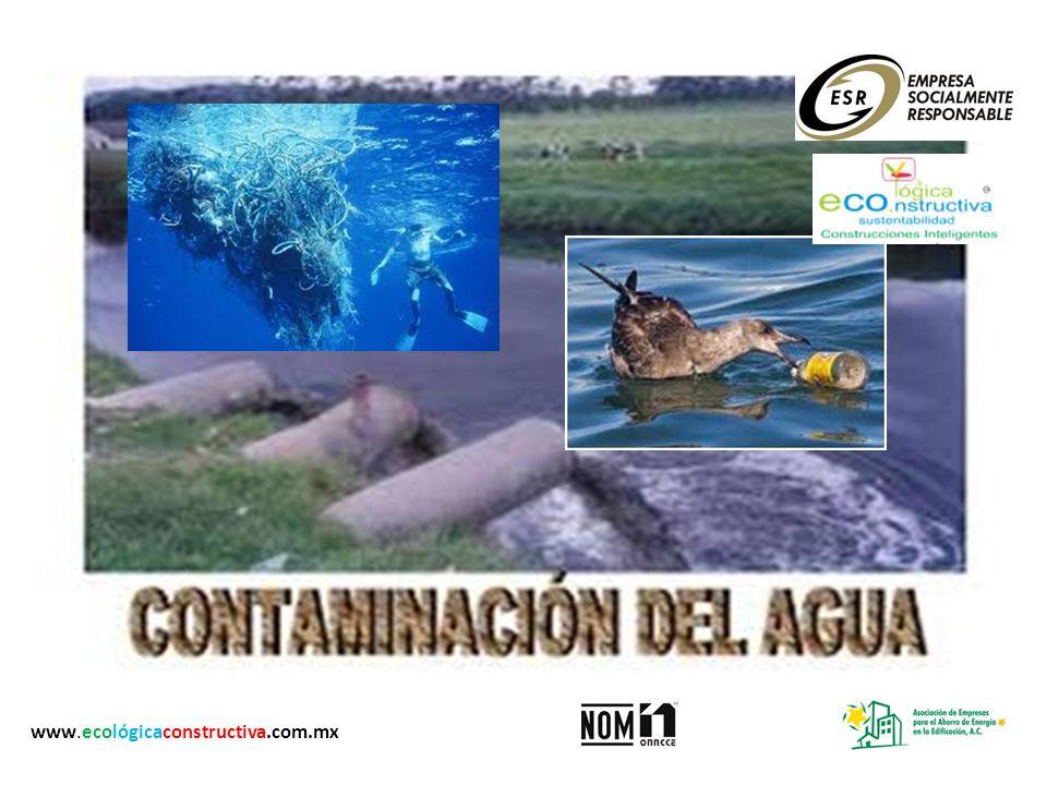 www.ecológicaconstructiva.com.mx