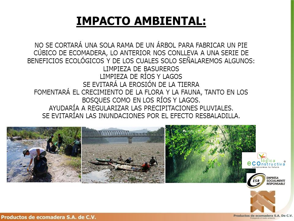 IMPACTO AMBIENTAL: