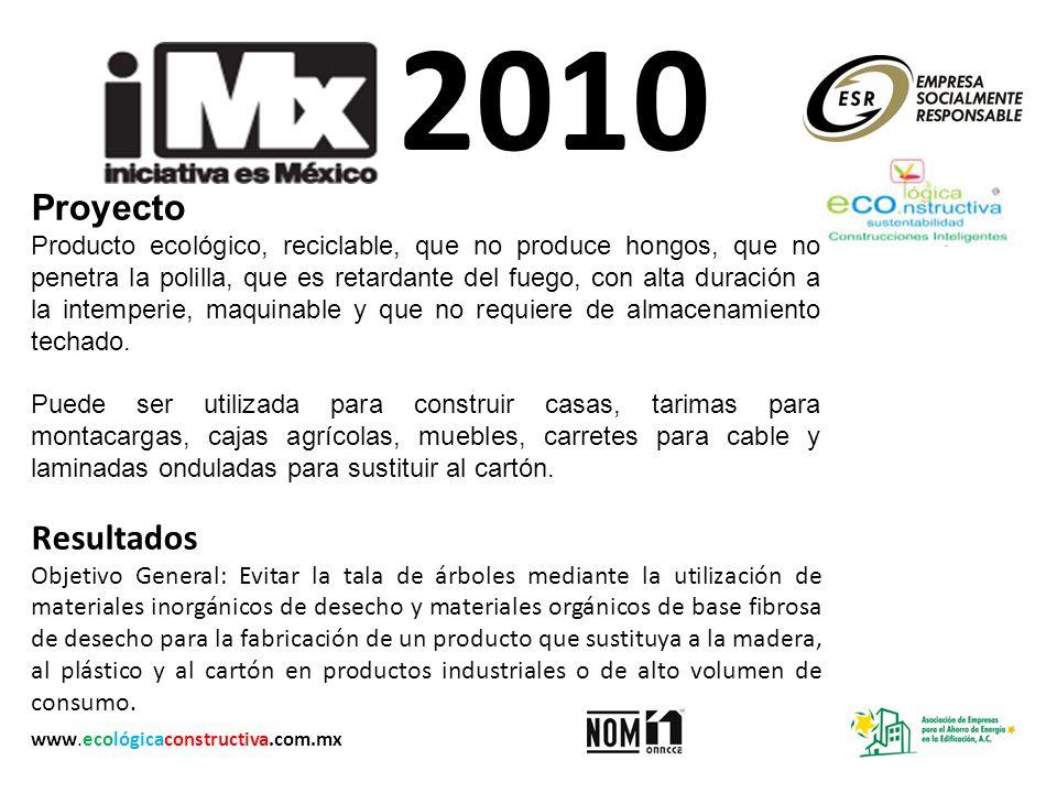 2010 Proyecto.