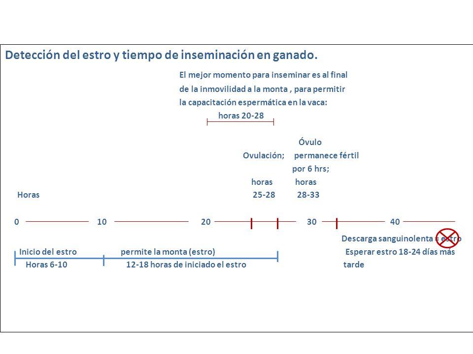 0 10 20 30 40 Detección del estro y tiempo de inseminación en ganado.