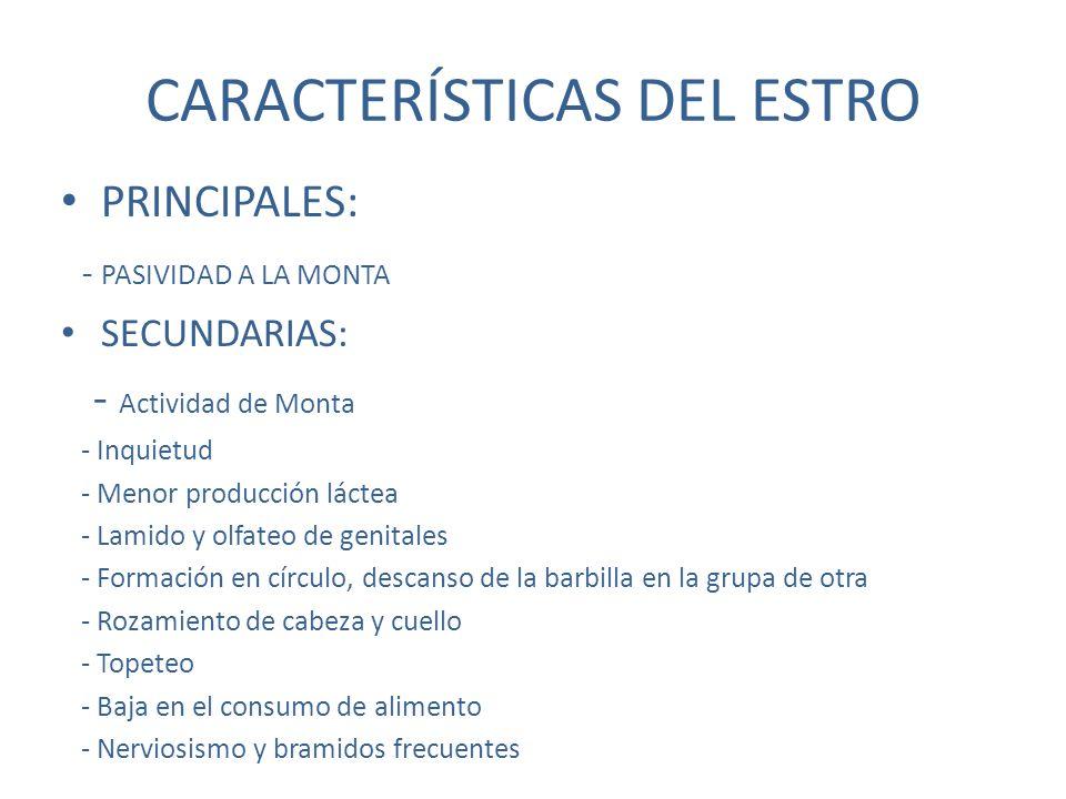 CARACTERÍSTICAS DEL ESTRO