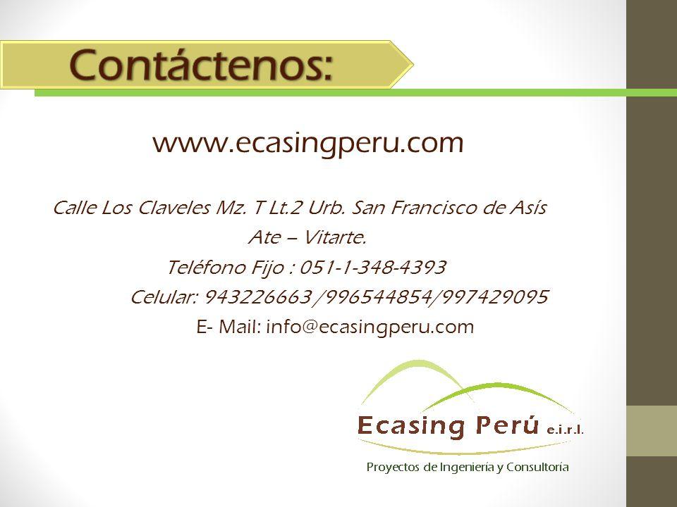 Contáctenos: www.ecasingperu.com