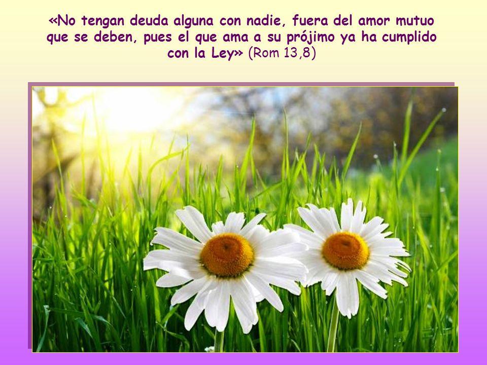 «No tengan deuda alguna con nadie, fuera del amor mutuo que se deben, pues el que ama a su prójimo ya ha cumplido con la Ley» (Rom 13,8)