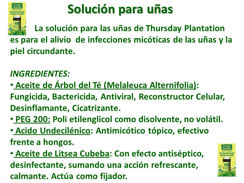 Solución para uñas La solución para las uñas de Thursday Plantation es para el alivio de infecciones micóticas de las uñas y la piel circundante.