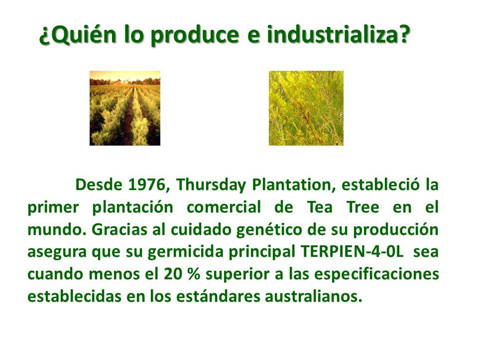 ¿Quién lo produce e industrializa