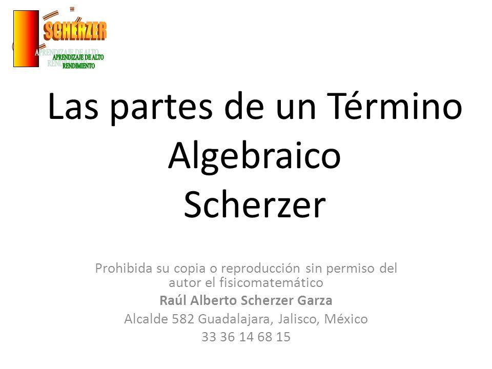 Las partes de un Término Algebraico Scherzer