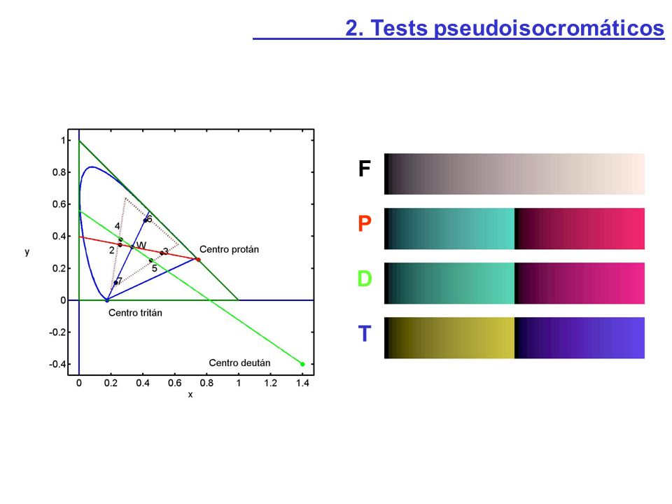 2. Tests pseudoisocromáticos