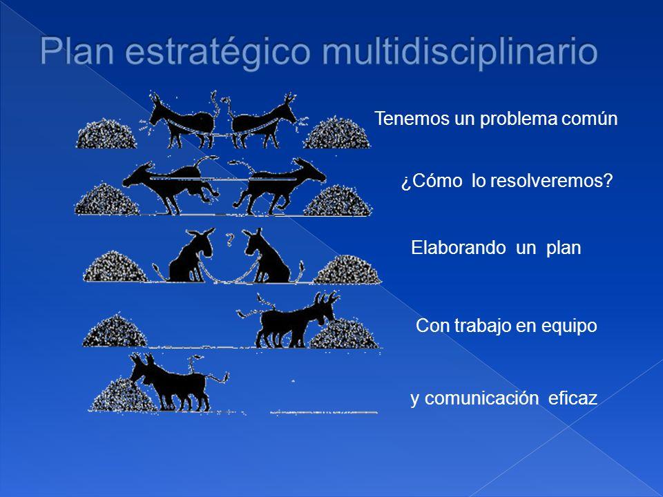 Plan estratégico multidisciplinario