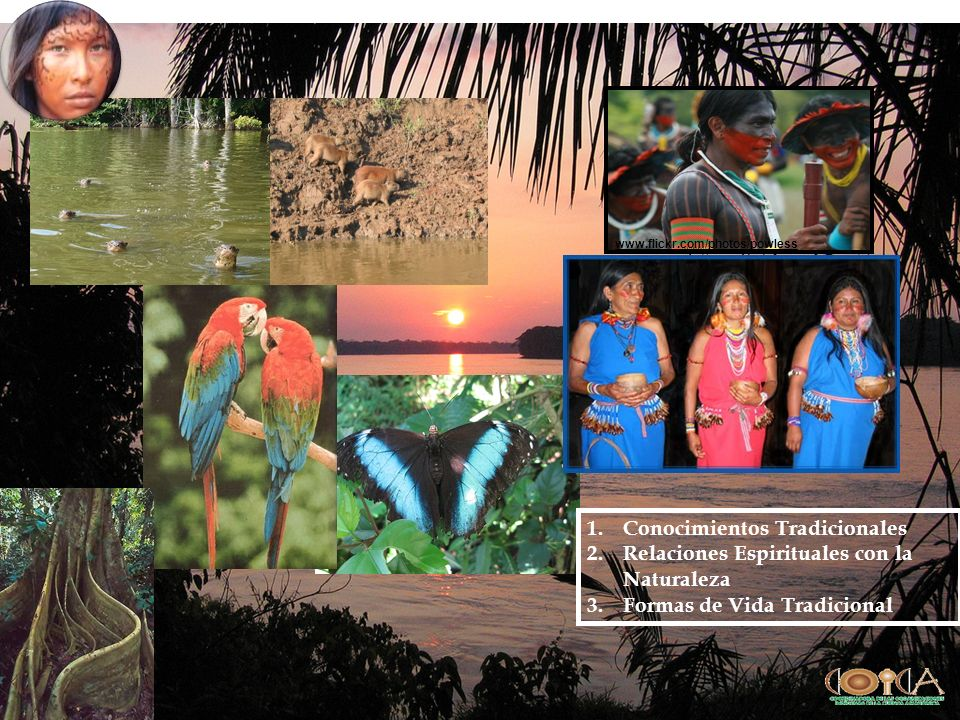 Conocimientos Tradicionales Relaciones Espirituales con la Naturaleza
