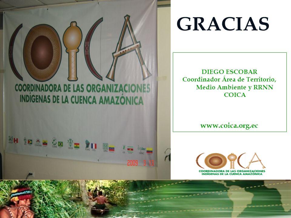 Coordinador Área de Territorio, Medio Ambiente y RRNN COICA