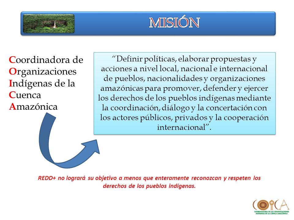 Coordinadora de Organizaciones Indígenas de la Cuenca Amazónica