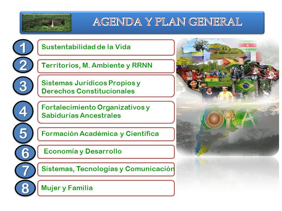 1 2 3 4 5 6 7 8 AGENDA Y PLAN GENERAL Sustentabilidad de la Vida