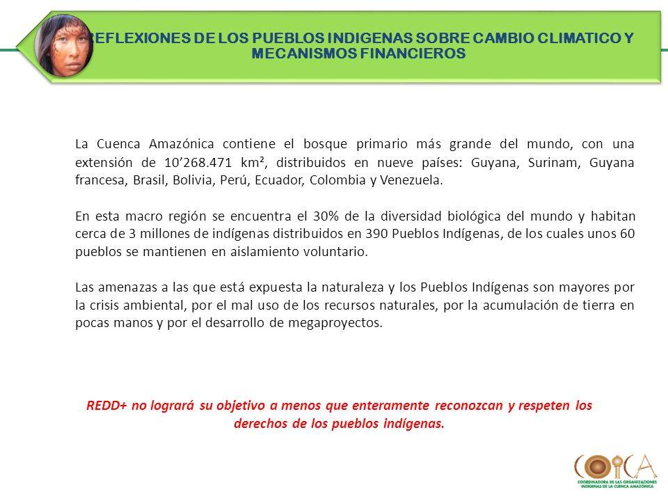 REFLEXIONES DE LOS PUEBLOS INDIGENAS SOBRE CAMBIO CLIMATICO Y MECANISMOS FINANCIEROS