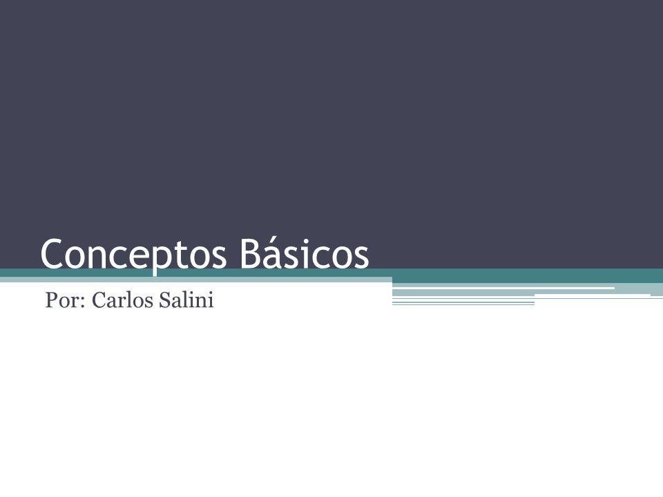 Conceptos Básicos Por: Carlos Salini
